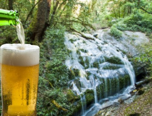 OPINION: Can beer save the planet? Probably not, but brewers are helping lead the way